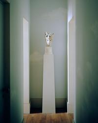 WSJ Magazine _ Alexandre Biaggi - © François Coquerel